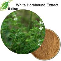 White Horehound Extract(Marrubium Vulgare Extract)