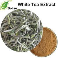 Estratto di tè bianco