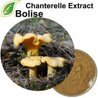 Chiết xuất Chanterelle (Chiết xuất Cantharellus Cibarius)