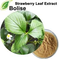 Extract ng Strawberry Leaf